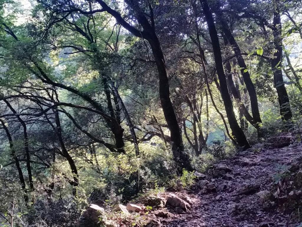 sentiero Cammino Francesco 2016
