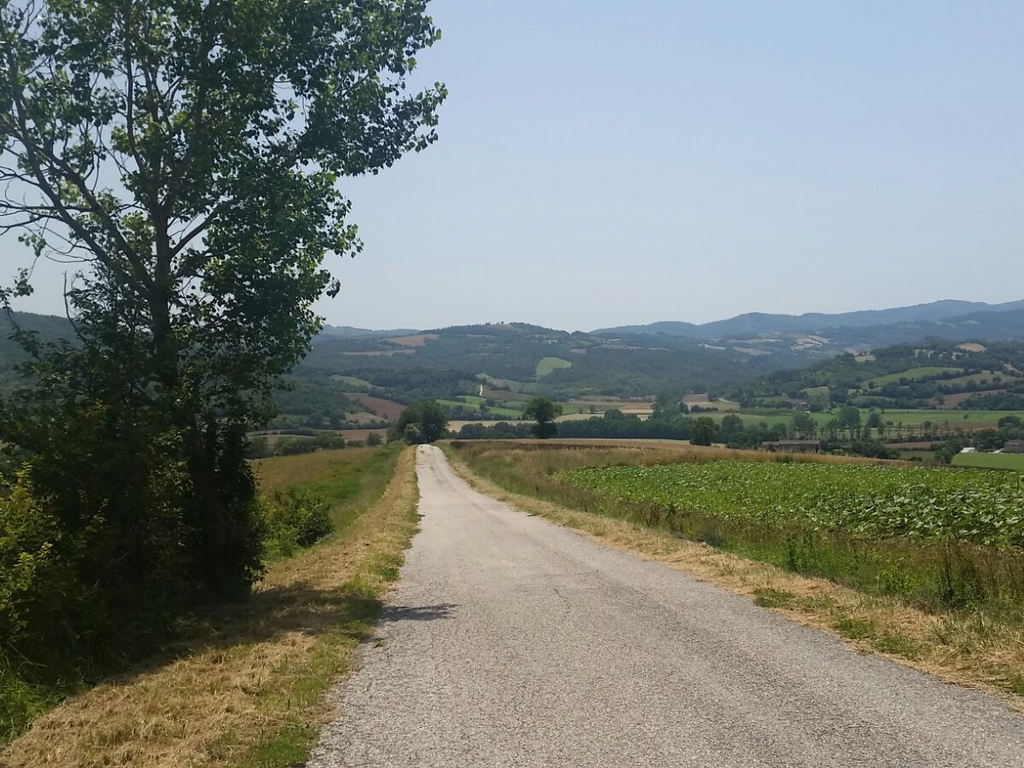 strada Cammino Francesco 2016