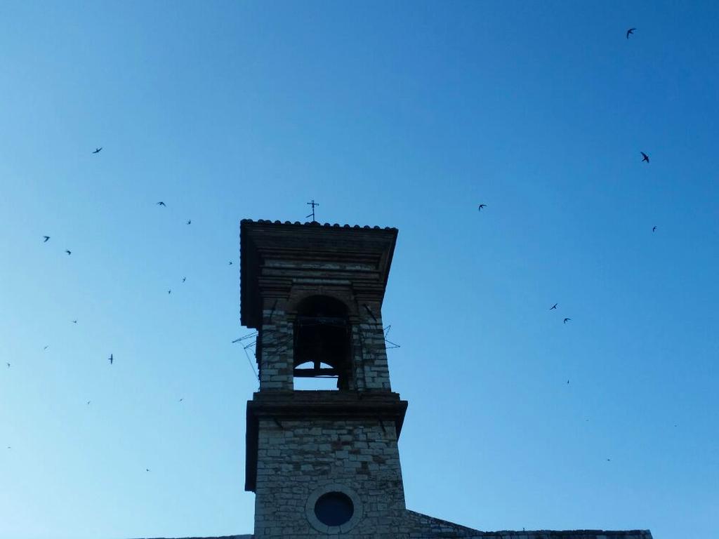 campanile Cammino Francesco 2016