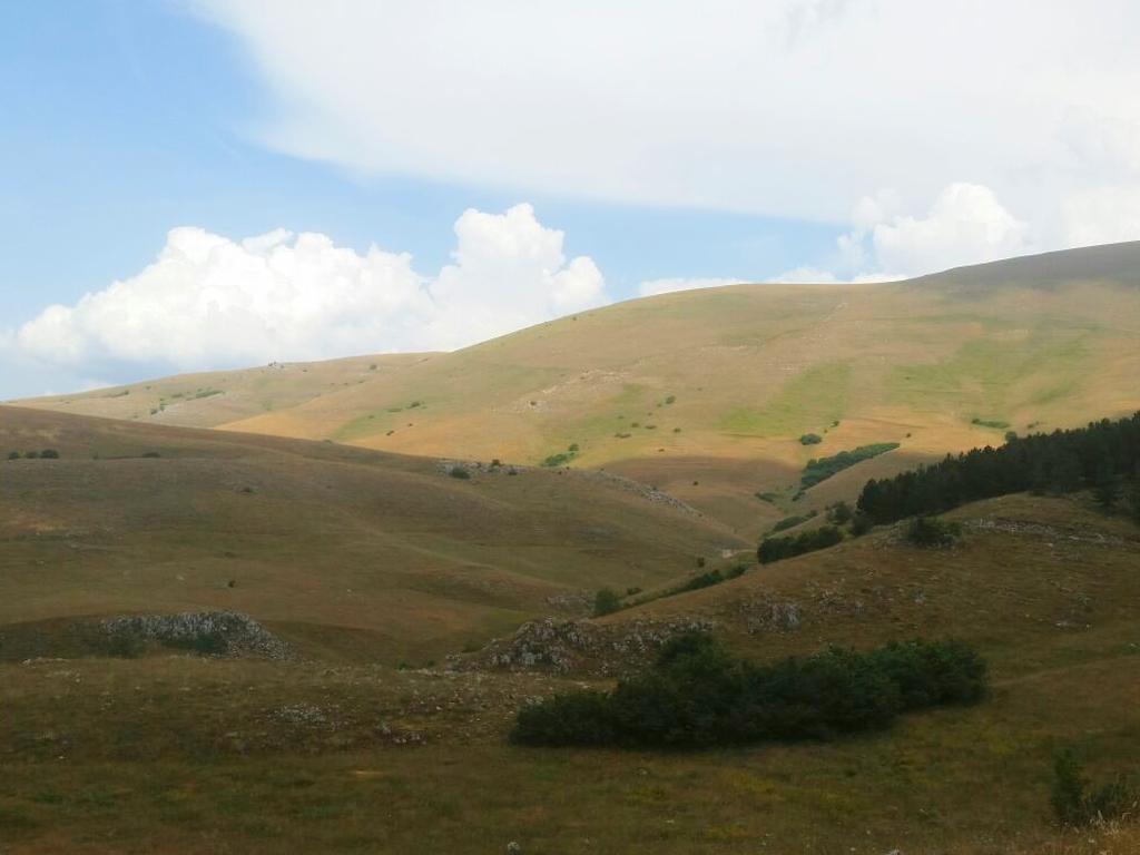 colline Cammino Francesco 2016