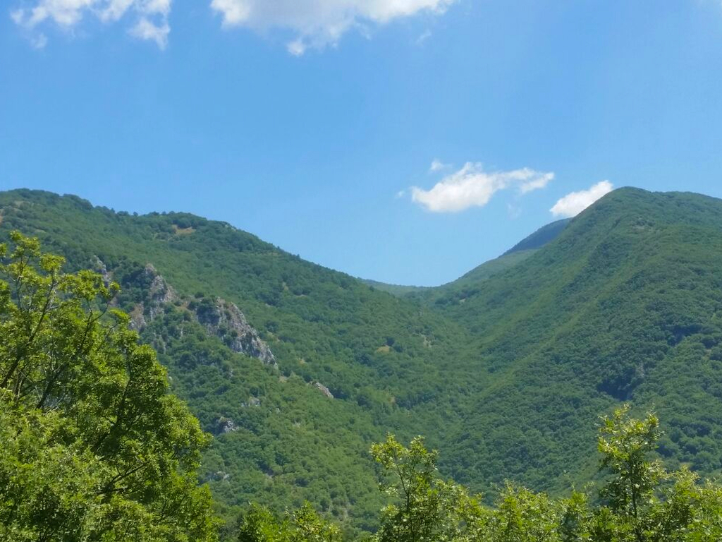 montagne verdi Cammino Francesco 2016