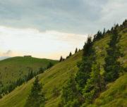 Verso il Rifugio San Fermo_Val Camonica_Passicreativi