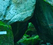 La roccia della strega Val di Cama_Passicreativi